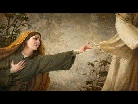 ¿Cómo hago para vivir en contacto con Jesús? (comentario al Evangelio)