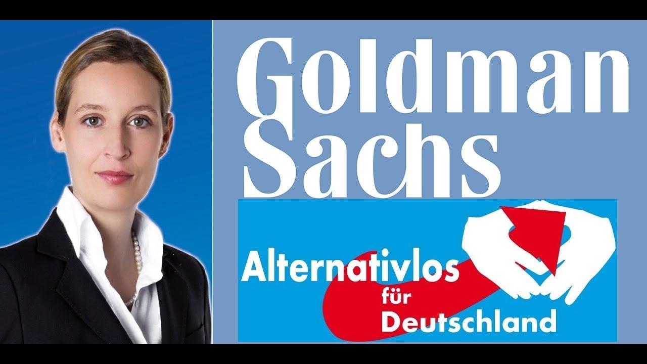 Image result for Alice Weidel GOLDMAN SACHS