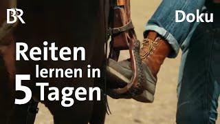 Reiten lernen in 5 Tagen | Schmidt Max | Freizeit | Natural Horsemanship