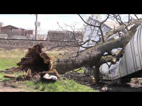 STORM DAMAGE! Tree into Trailer Truck Paterson NJ 21st Ave & Railroad Ave
