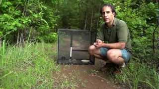 Rattlesnake Avoidance Training For Dogs In Georgia