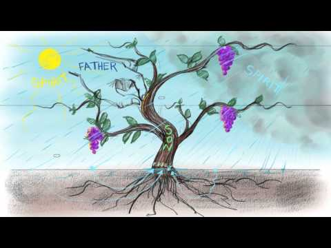 The Vine and the Branches | John 15:1-15