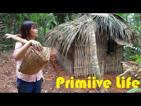 Primitive Technology: Make a wild hut with natural plants