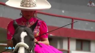Vicente Fernandez   Mujeres divinas
