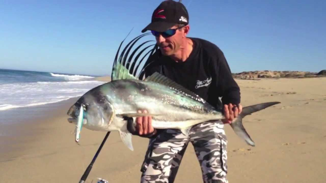 Dave a roosterfish of baja youtube for Rooster fish cabo