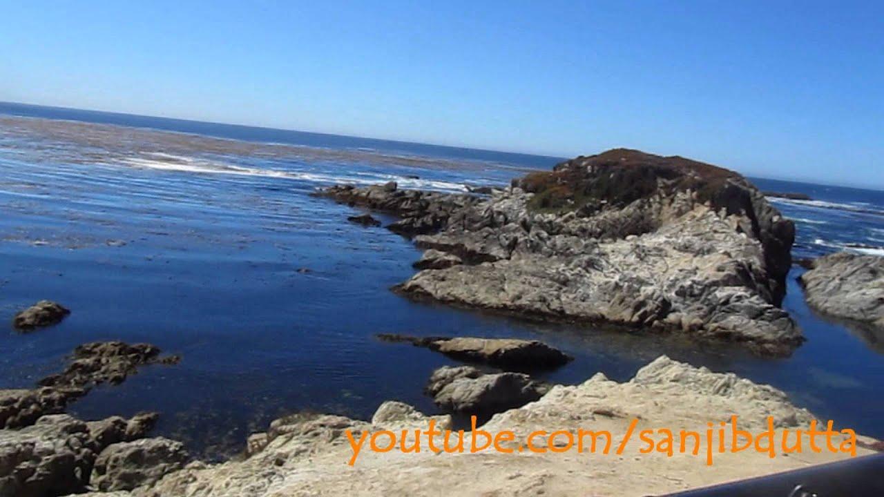 Scenic 17 Mile Drive Pebble Beach California