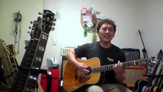 """Greedy fly""..bush/ acoustic version./ blueridge BR-180"