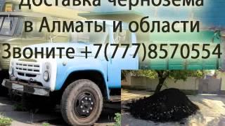 Загрязнение почв кокшетау