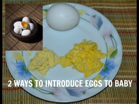 How To Give Eggs Baby