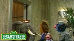Ein Elefant als Fahrstuhlführer | Sesamstraße