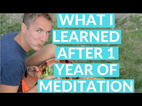 What I Learned after One Year of daily Meditation.