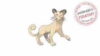 Как нарисовать поэтапно кошку со звездой во лбу простым карандашом(О том как нарисовать кошку написано уже много. Но при этом всегда найдется человек, который с трудом предста..., 2014-07-21T05:23:32.000Z)