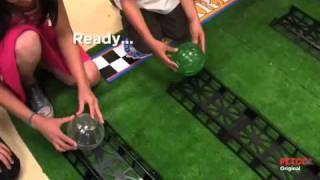 Hamster Ball Derby - Presented By Petco