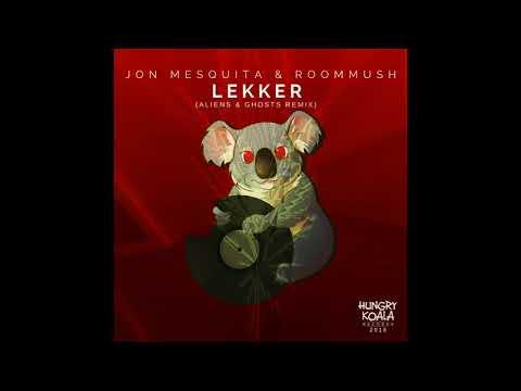 Lekker - Jon Mesquita and Roommush  (Aliens & Ghosts Remix)