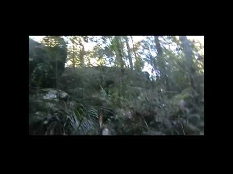 Glenbrook Yowie Video from June 2013