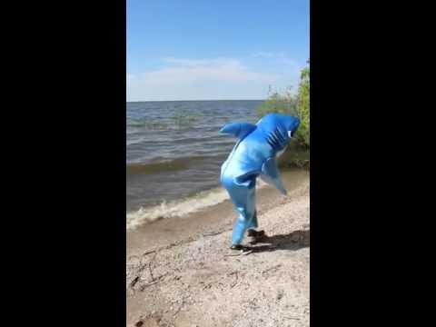 Shark ira shark dancing shakira hips don't lie video SHARK-ira [OFFICIAL VIDEO]