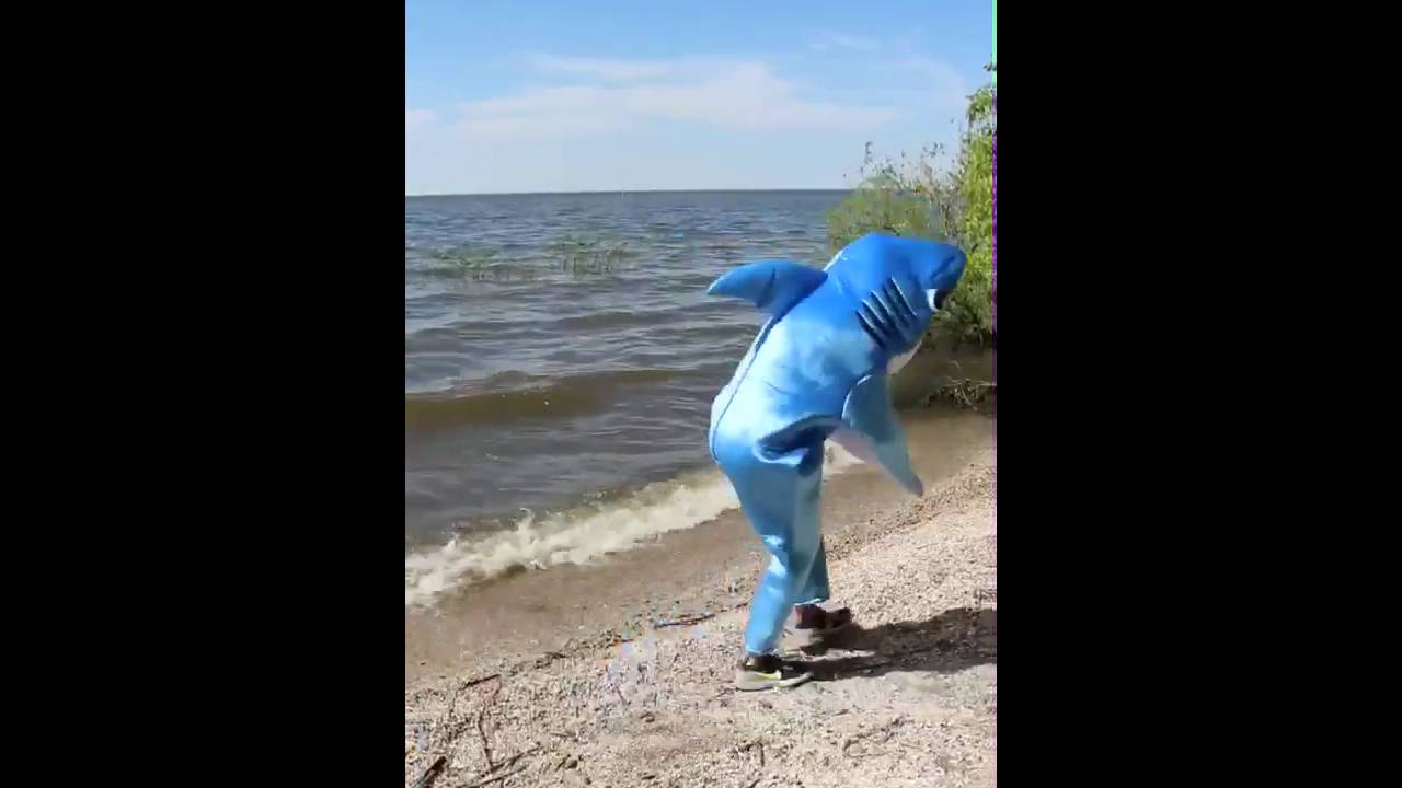 Shark Ira Shark Dancing Shakira Hips Dont Lie Video Shark Ira Official Video