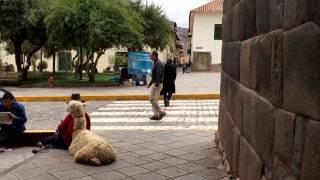 Cusco, Peru A Walk through the City Streets