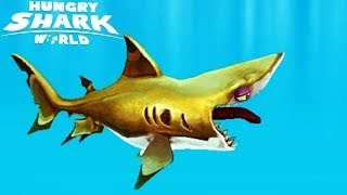 ГОЛОДНАЯ АКУЛА #1 Hungry Shark Прохождение игры VIDEO passing games