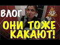 VLOG: ОБОСРАЛАСЬ / Лабецкий Егор