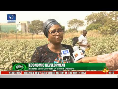 News Across Nigeria: Cotton & Textile Industry To Be Revived By FG