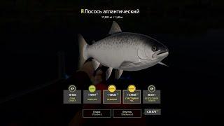 Русская рыбалка 4 день 8 фарм на Волхове