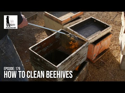 How To Clean Beehives - The Bush Bee Man