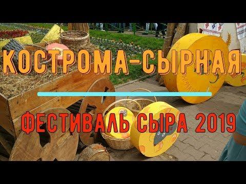 Кострома- сырная. Фестиваль сыра 2019