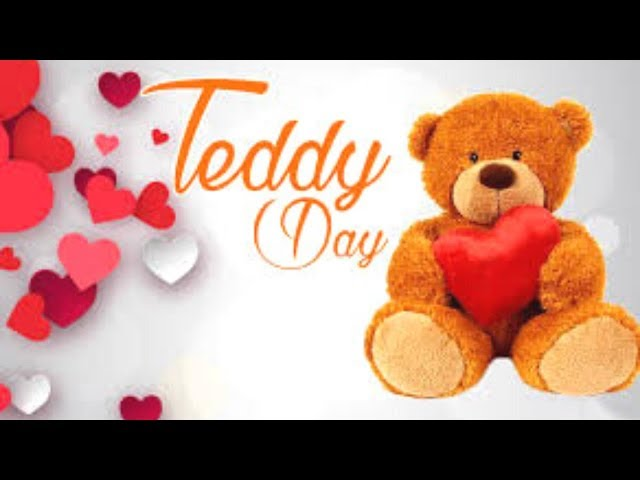 Teddy Day Wishes Video/ Whatsapp Status/ Valentine week 2020