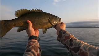 Lake Champlain fly fishing for Bass and Pike chasing birds to find open water fish short edit