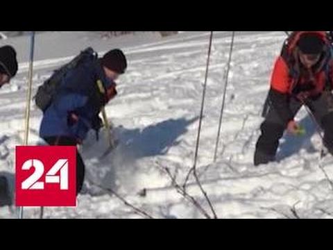 Лавина под Мурманском: двое погибли, вышивший - в тяжелом состоянии