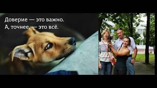 А у собак, в отличие от людей, хорошая память на хорошее — и плохая на плохое  Эльчин Сафарли iPh