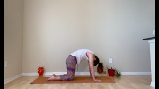 Gentle Yoga with Shelley