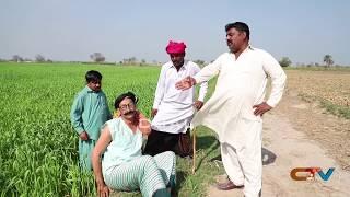 Fasal Ka Nuqsan #Helmet Rocket Aur Tedi New Punjabi Comedy | Funny Video 2020 | Chal TV