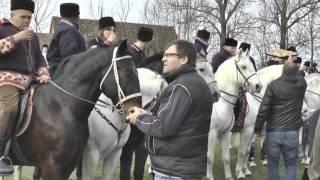 4. Pokladno jahanje u Piškorevcima (reportaža) - Piškorevci 2016