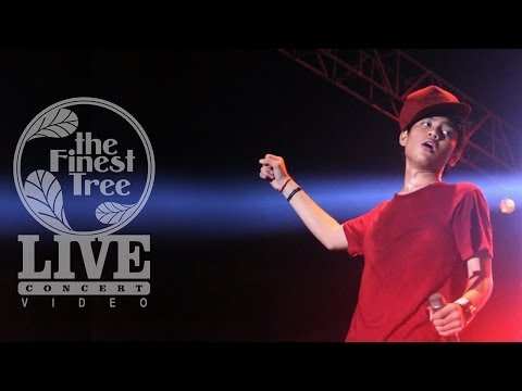 Payphone - The Finest Tree LIVE CONCERT #5 (cover)