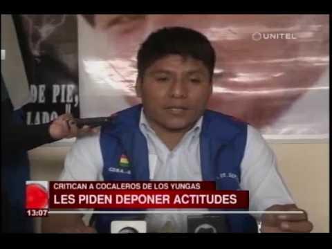 Cocaleros del trópico critican las movilizaciones de los cocaleros de Los Yungas