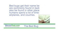 Eliminate Bed Bugs with Natural Bed Bug Formula Guaranteed Effective and Safe for Sarasota, FL