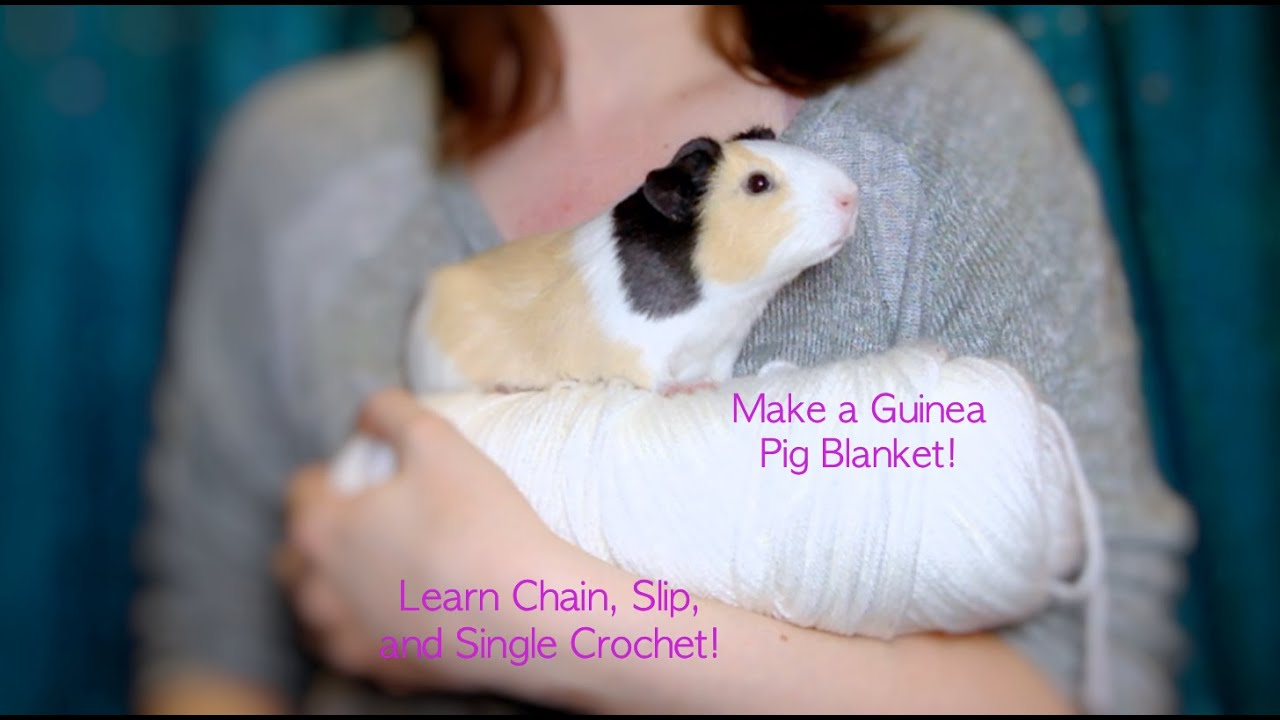 How to make a guinea pig blanket Chain and Single Crochet