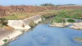Pollution des plages de Tanger, le bétail meurt, des habitants coupés du monde...