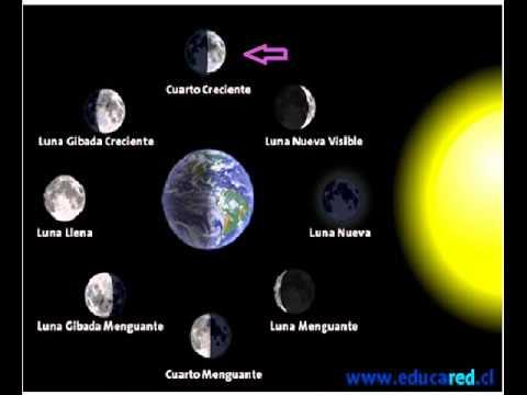 Maquetas de las fases de la luna - Imagui