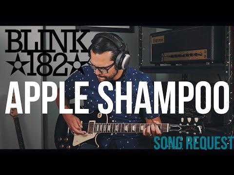 Blink182  Apple Shampoo Guitar