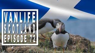 Gambar cover Vanlife Vlog: Isle of Staffa and Longa Near the Cute Puffins