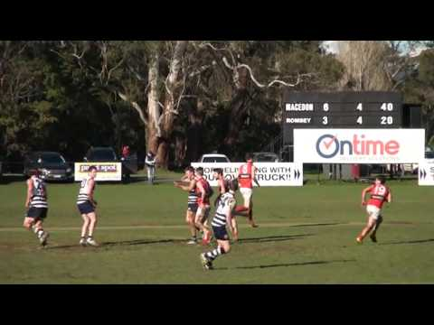 Round 11 Highlights