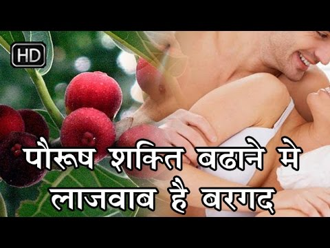 पौरुष शक्ति बढ़ाने में लाजवाब है बरगद | Banyan Tree Fruit Remedies For Men