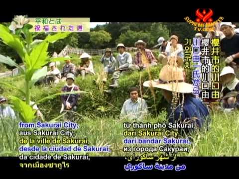 Yoshikazu Kawaguchi's Natural Farming Method (1/2)