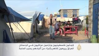 لاجئون فلسطينيون ونازحون بكردستان العراق يبيعون كلاهم