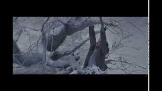 Zinda Hoon Yaar - Lootera 2013 720p