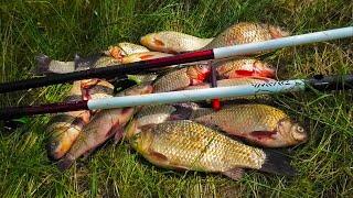Крупный Карась на Поплавок на Водохранилище КАК и НА ЧТО Ловить Простая Рыбалка Рыбное Место