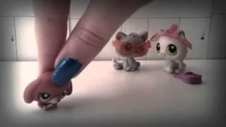 """Littlest pet shop music video- """"Cool Kids"""" by Echosmith"""